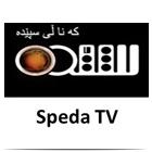 Speda Tv Canlı Zindi Live